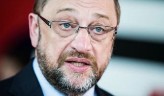 Hat Martin Schulz eine Chance gegen Angela Merkel? (Foto)