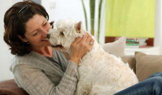 Haustiere können krank machen (Foto)