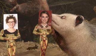 Heidi bewährt sich als Oscar-Orakel - teilweise (Foto)