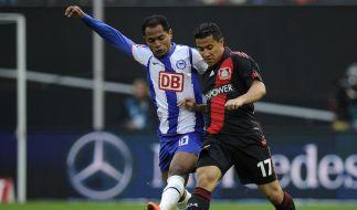 Hertha verpasst Sieg nach Kraftakt - 3:3 in Leverkusen (Foto)