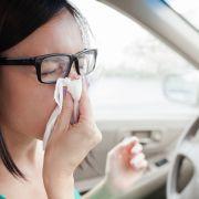 So bändigen Sie die Allergieauslöser am Steuer (Foto)