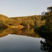 Idylle pur: Nicht nur im Herbst ist die Saale in Hirschberg nahe der bayerischen Grenze einen Besuch wert.
