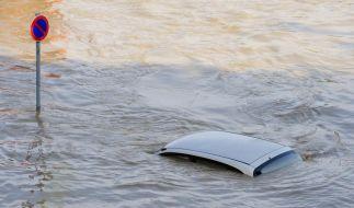 Hochwasser in Sachsen (Foto)