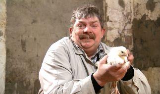 Hühnerwirt Klaus ist stolzer Besitzer eines alten Bauernhofes. (Foto)