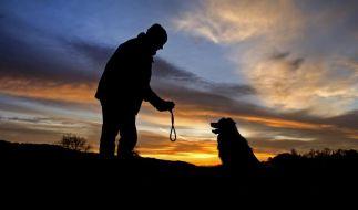 Hund an Silvester nicht noch aufgeregter machen (Foto)