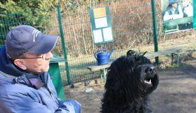 Hundetrainer fordert Führerschein auch für kleine Tiere (Foto)