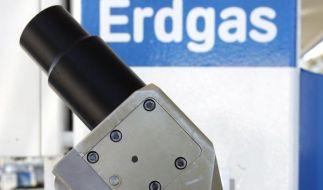 Hybrid, Elektro, Autogas: Die alternativen Antriebe (Foto)