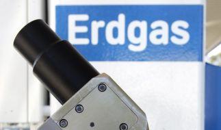 Hybrid, Strom, Erdgas - Alternativen zum Verbrennungsmotor (Foto)