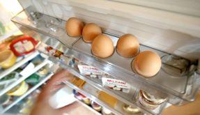 Hygiene im Kühlschrank (Foto)