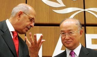 IAEA-Stichwahl um El-Baradei-Nachfolge (Foto)