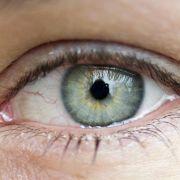 Im Auge wachsen keine Knochen - normalerweise...