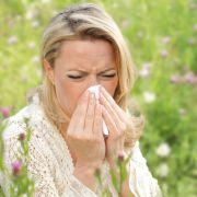 Heuschnupfen und Allergien: Diese Medikamente helfen Ihnen gegen Pollen (Foto)