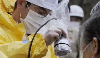Immer mehr Reaktoren geraten außer Kontrolle (Foto)