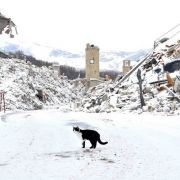 Mehrere schwere Erdbeben erschüttern erneut Mittelitalien (Foto)