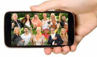In den sozialen Netzwerken kommen Dschungelfans voll auf ihre Kosten. (Foto)