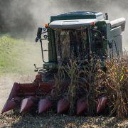 Horror-Unfall! Bäuerin von Erntemaschine zerfleischt (Foto)