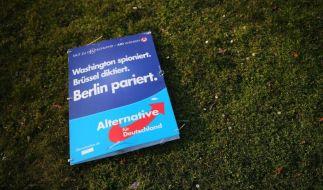 """In dem Programmentwurf soll die AfD unter anderem dafür werben, die """"Macht der Parteien"""" zu beschränken. (Foto)"""