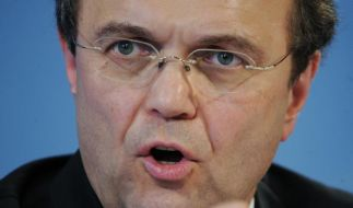 Innenminister Friedrich weist Kritik zurück (Foto)