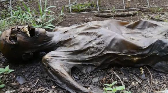 Body Farm in den USA