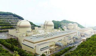 Japan fährt Atommeiler wieder hoch (Foto)