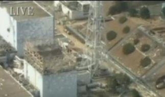 Japans Regierung plant verzweifelte Notmaßnahmen (Foto)