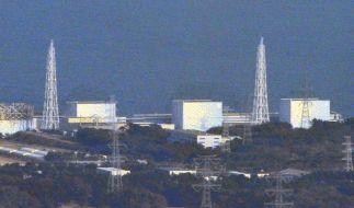 Japans Regierung will Atommeiler wieder hochfahren (Foto)