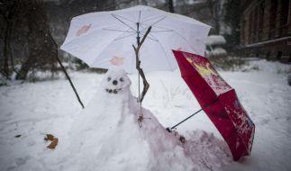 Jede Menge Neuschnee verwandelt Deutschland in eine weiße Winterlandschaft. (Foto)