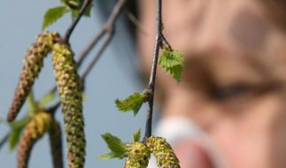 Jede zehnte Krankschreibung wegen Allergien (Foto)