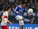 Joel Matip FC Schalke 04 (Foto)
