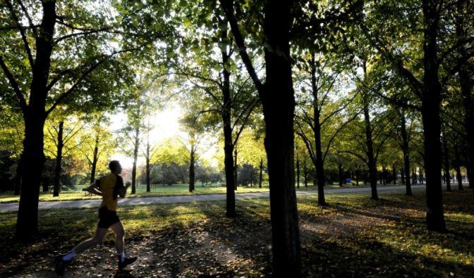 Jogging (Foto)