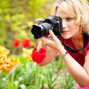Welche Tulpe soll die scharfe sein? Das können Lichtfeldfotografen künftig in aller Ruhe später entscheiden.