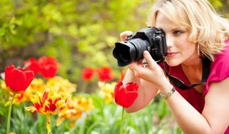 Kameras (Foto)