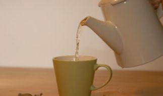 Kaum Nebenwirkungen: Kräutertees helfen gegen Husten (Foto)