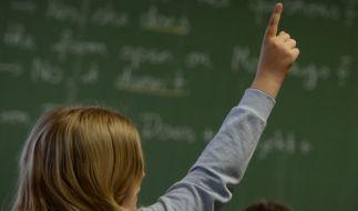 Kein Schulvergleichstest wird so genau gelesen wie die PISA-Studie. (Foto)