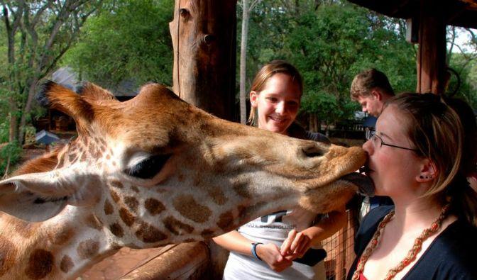 Kenia erhöht Gebühren für Nationalparks (Foto)