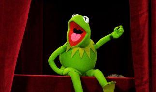 Kermit hält sich mit Yoga fit (Foto)