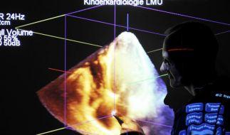 Kinderherzen in 3D: Neue Ultraschall-Diagnostik (Foto)