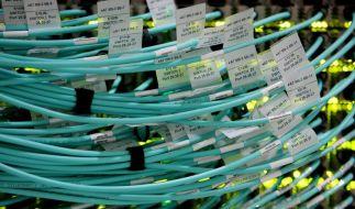 «Kleiner Bruder» von Stuxnet in Europa aufgetaucht (Foto)