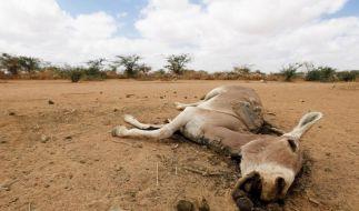Klimawandel führt zu Extremwetter und Armut (Foto)