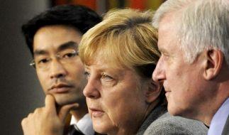 Koalitions-Spitzen wollen Fahrplan für 2013 festlegen (Foto)