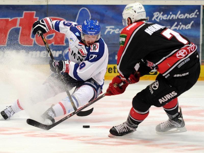 eishockey köln