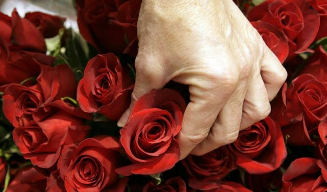 «Königin der Blumen»: Rosen zum Valentinstag (Foto)