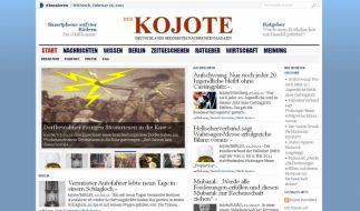 Kojote (Foto)