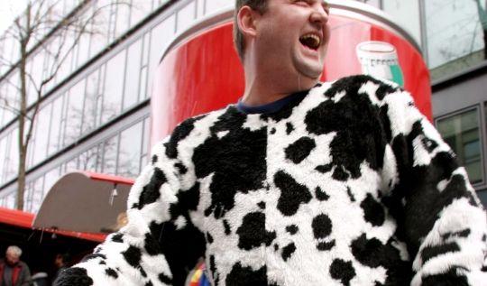 Kuh-Kostüm im Karneval (Foto)