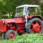 Landwirtschaft könnte so friedlich und beschaulich sein, wären da nicht fiese Arbeitsunfälle...