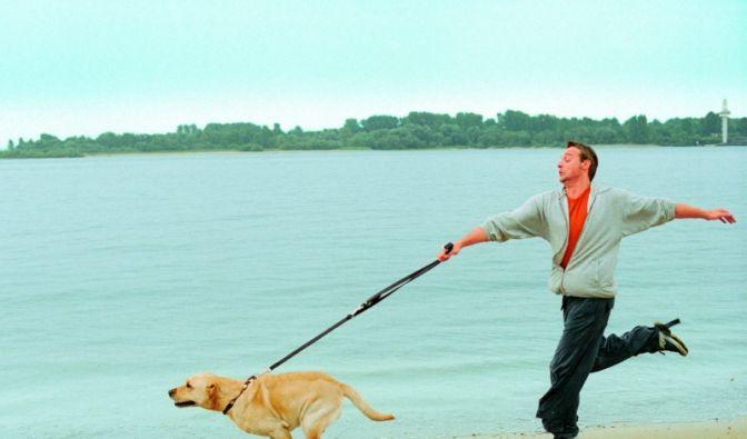 Laufen mit Hund (Foto)
