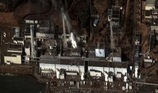 Laut USA kein Wasser mehr in Abklingbecken in Fukushima-Daiichi (Foto)