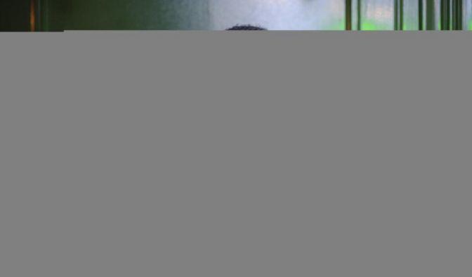 Lena Meyer-Landrut (Foto)