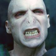 Lord Voldemort kann Harry Potter nicht riechen.
