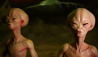 Mehr als die Hälfte der Deutschen glaubt an Aliens. (Foto)